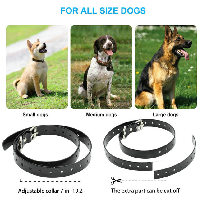 Waterproof&rechargeable dog training collar for 2 dogs