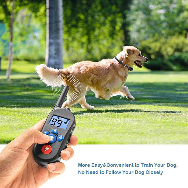 Dog training collar waterproof and Rechargeable for 1 dog